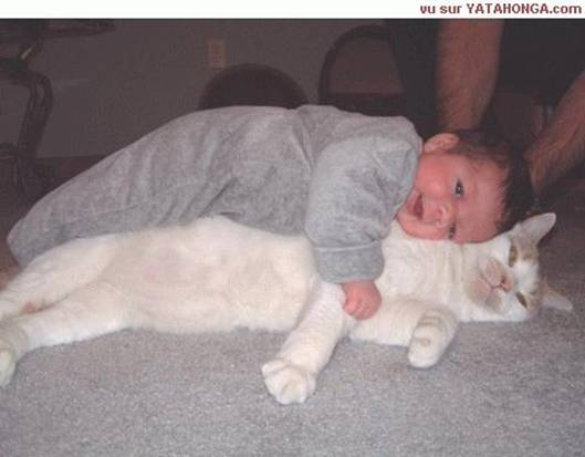 Att2_baby_and_kitty_1